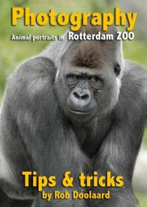 Photography: animal portraits in the ZOO (9.95 EUR)